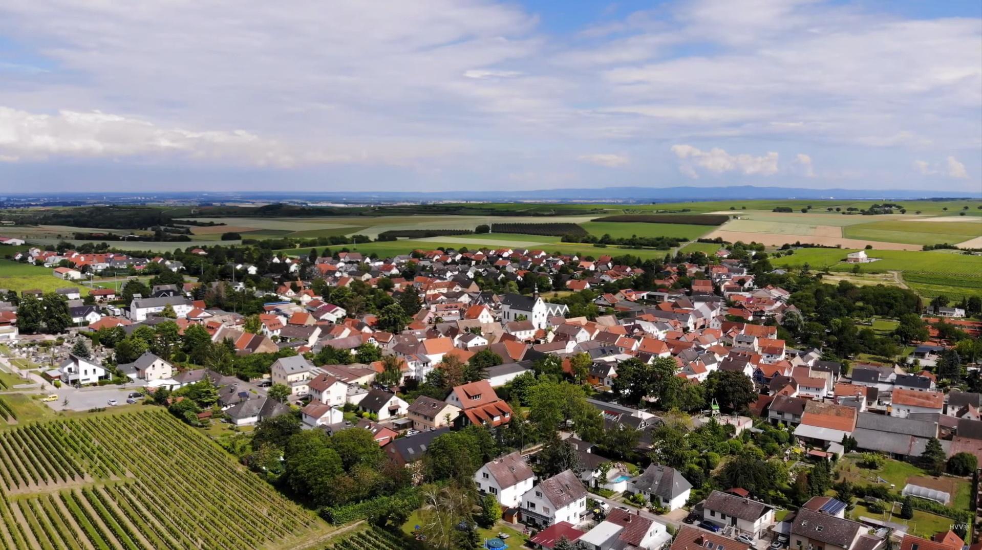 Luftbild Lörzweiler